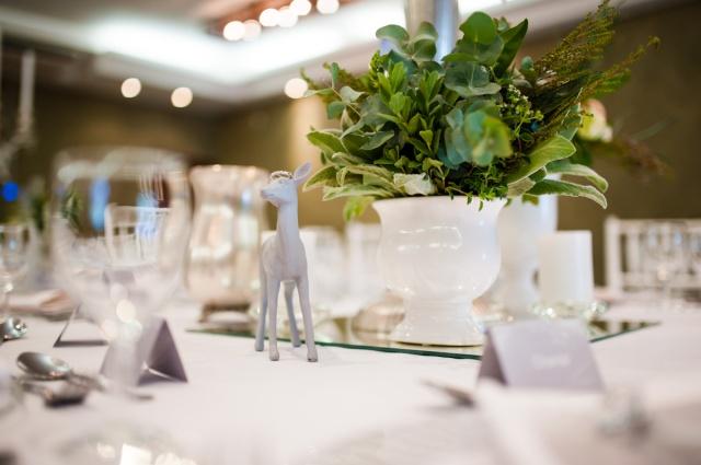 AndStory-Meagan-David-Wedding-Askari-Lodge-Johannesburg-12