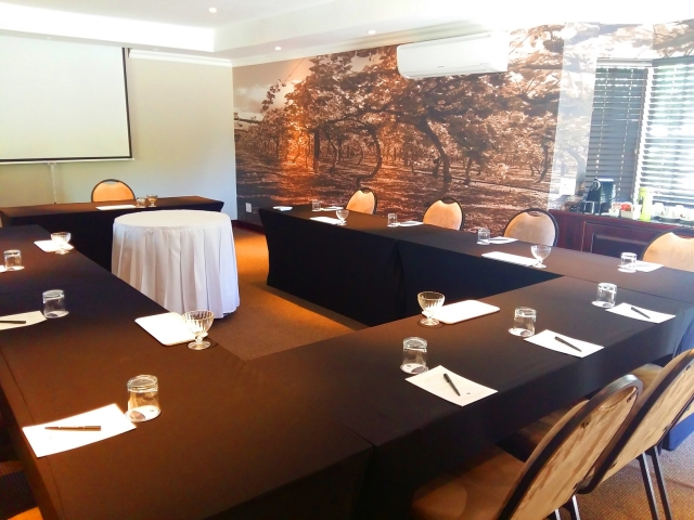 Glenburn Spa Grapevine Conference Room