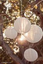 11030-Paper-Lanterns-