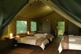 Bush Willow - tent interior (Copy)